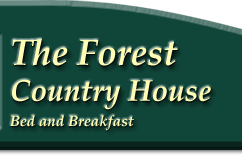 The Forest Cottages Self Catering Accomodation